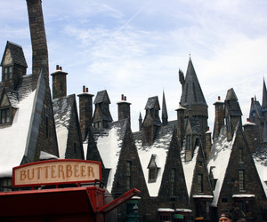 awesome, florida, and harry potter image