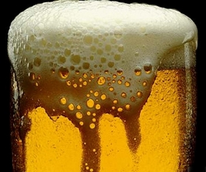alcohol, drink, and beer image