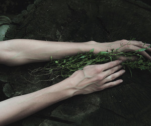 dark, hands, and nature image