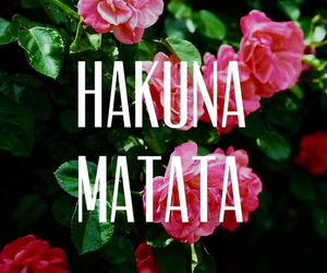 hakuna matata, flowers, and quotes image