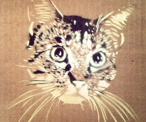 cat, stencil, and mrow image