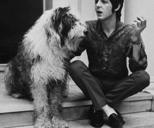 black and white, men, and Paul McCartney image