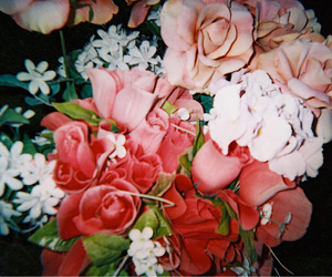 night, roses, and vintage image