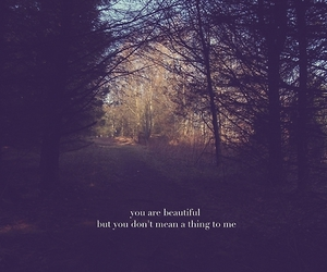 beautiful, death cab for cutie, and nature image