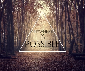 forest, hipster, and quotes image