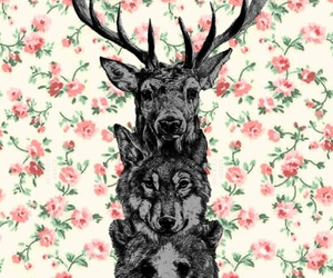 background, flowers, and animal image