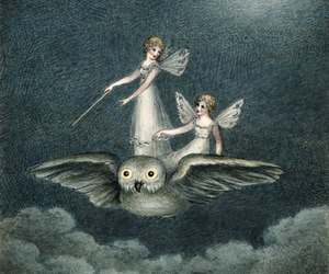owl, fairy, and moon image