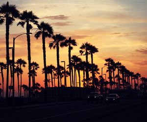 amazing, california, and car image
