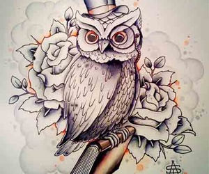 owl and rose image