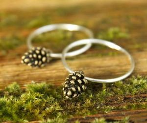 moss, pine cone, and ring image