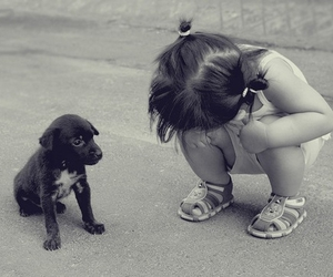 black and white, dog, and little girl image