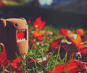 domo, cute, and photography image