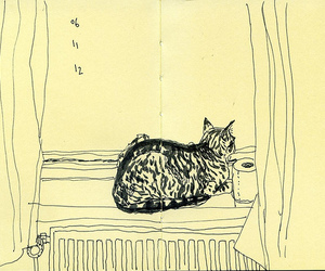 cat, drawing, and window image