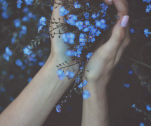 flowers, blue, and hands image