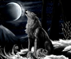 dark, moon, and wolf image