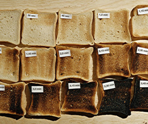 bread, photography, and toast image