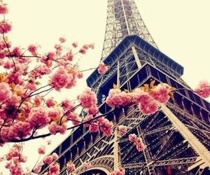 eiffel tower, france, and landscapes image