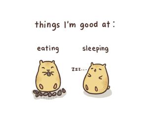 eating, funny, and sleeping image
