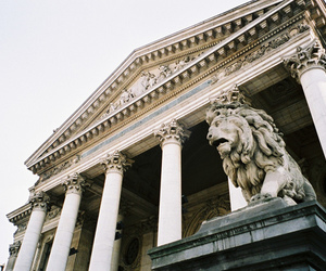 photography, lion, and architecture image