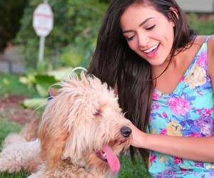 bethany mota and dog image