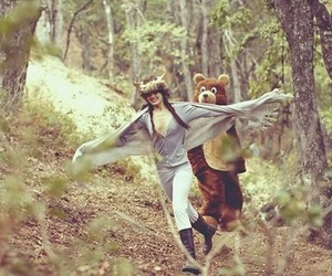 bear and forest image