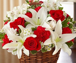 buy fresh flowers, send flowers online, and deliver flowers image