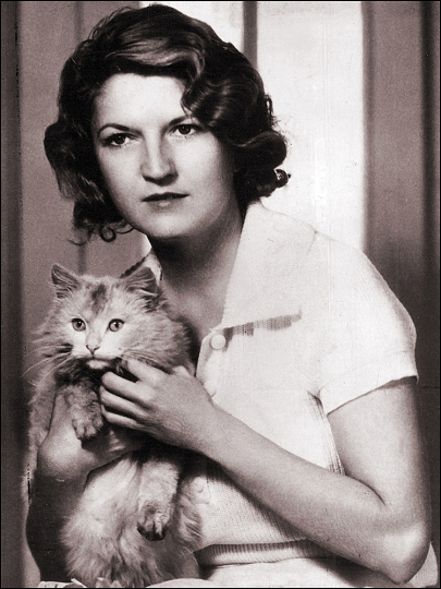 black and white, cat, and writers image