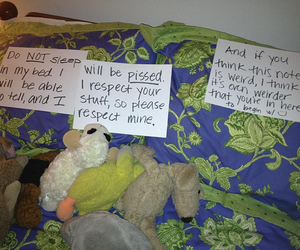 funny, roomate, and respect image