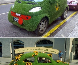 car, flower, and grass image