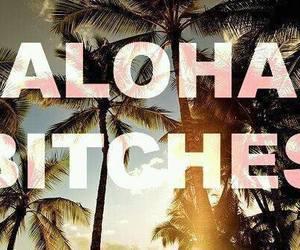 bitch, Aloha, and summer image