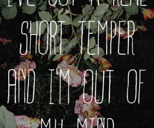 forever the sickest kids, song, and words image