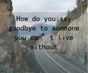 love, goodbye, and live image
