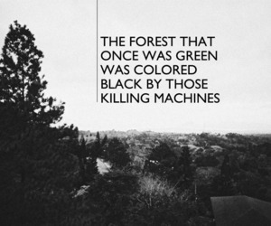 forest, Lyrics, and dirty paws image