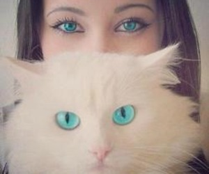 cat, eyes, and girl image
