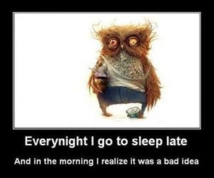 funny, sleep, and lol image