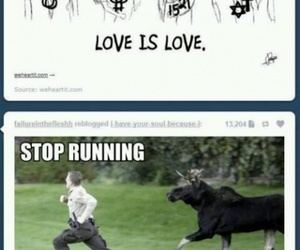 love, funny, and lol image