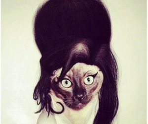 cat, Amy Winehouse, and funny image