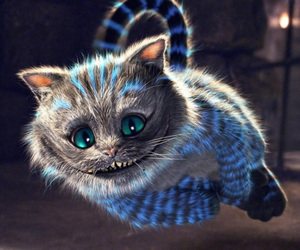 cat, alice in wonderland, and wonderland image