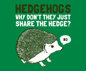 hedgehog, funny, and green image