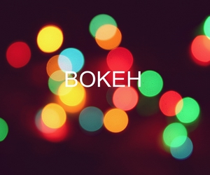 bokeh, color, and photo image