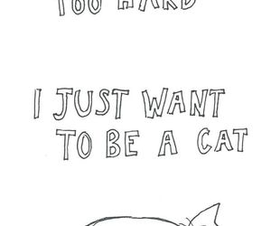 cat, life, and quotes image