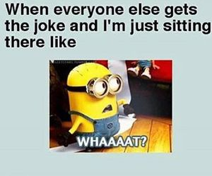 minions, joke, and funny image