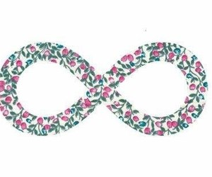 infinity, love, and flowers image