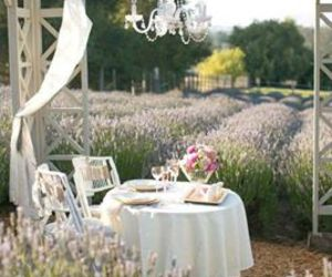 provence and romantique image
