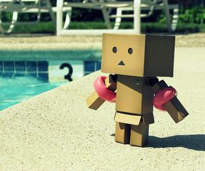 danbo, pool, and swimming image
