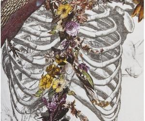 flowers, art, and bird image