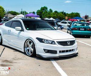 Honda and accord image