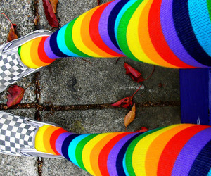 color, colorful, and socks image