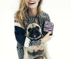 fashion and dog image