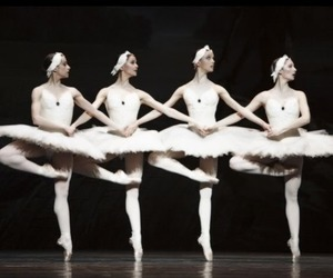 ballerinas, ballet, and swan lake image